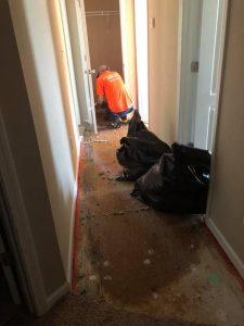 Cleaning Up Sewage Water Damage